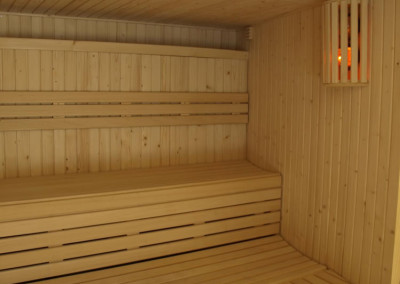 findland sauna palm 50